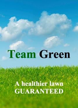 team-green-sky